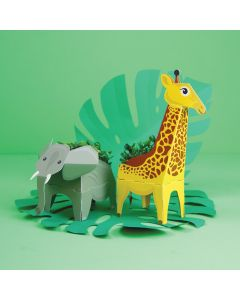 Make your own Jungle Plant Pals