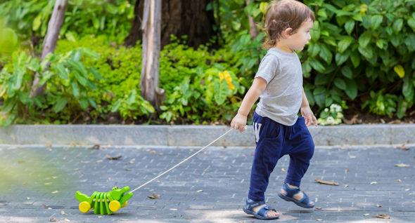 Our Picks for Toddlers